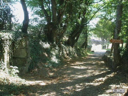 サンティアゴ・デ・コンポステーラの画像 p1_23