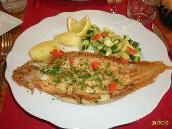 「今日のお勧め」だった魚料理