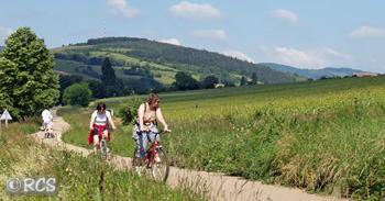 ブドウ畑もあるブルゴーニュの自転車専用道路