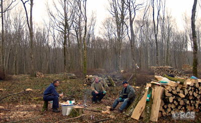 森で木を切る人たちの昼食風景