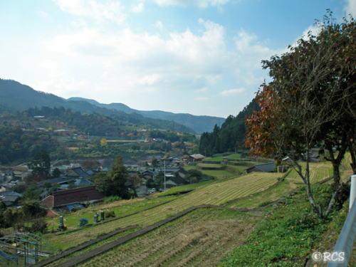 星野村の風景