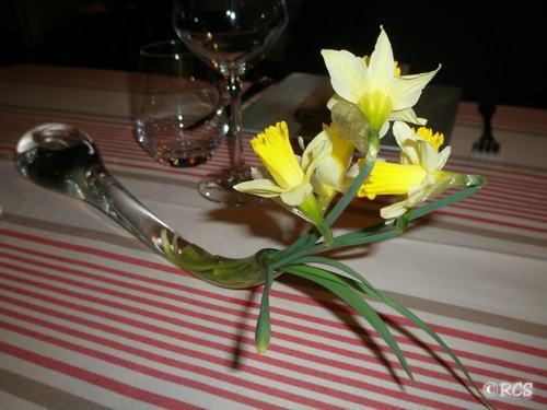 フランス森に自生する黄水仙