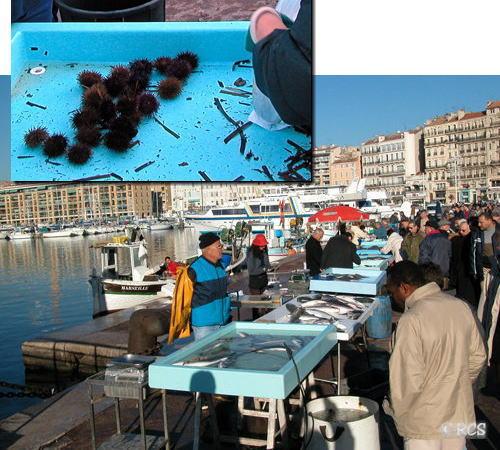 マルセイユの港の朝市